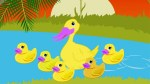 Five little ducks song
