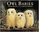 Owl Babies story. Story club English.